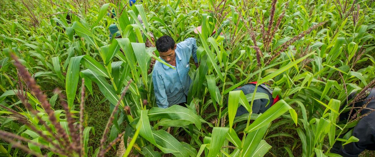 Thailand border migrant framers © The Global Fund, John Rae