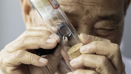A medical entomologist examines a mosquito identified in Yunnan, China © WHO, Global Malaria Programme
