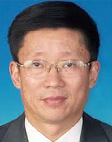 Professor Gao Qi