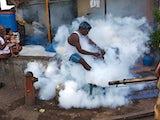 India fumigation maciej dakowicz